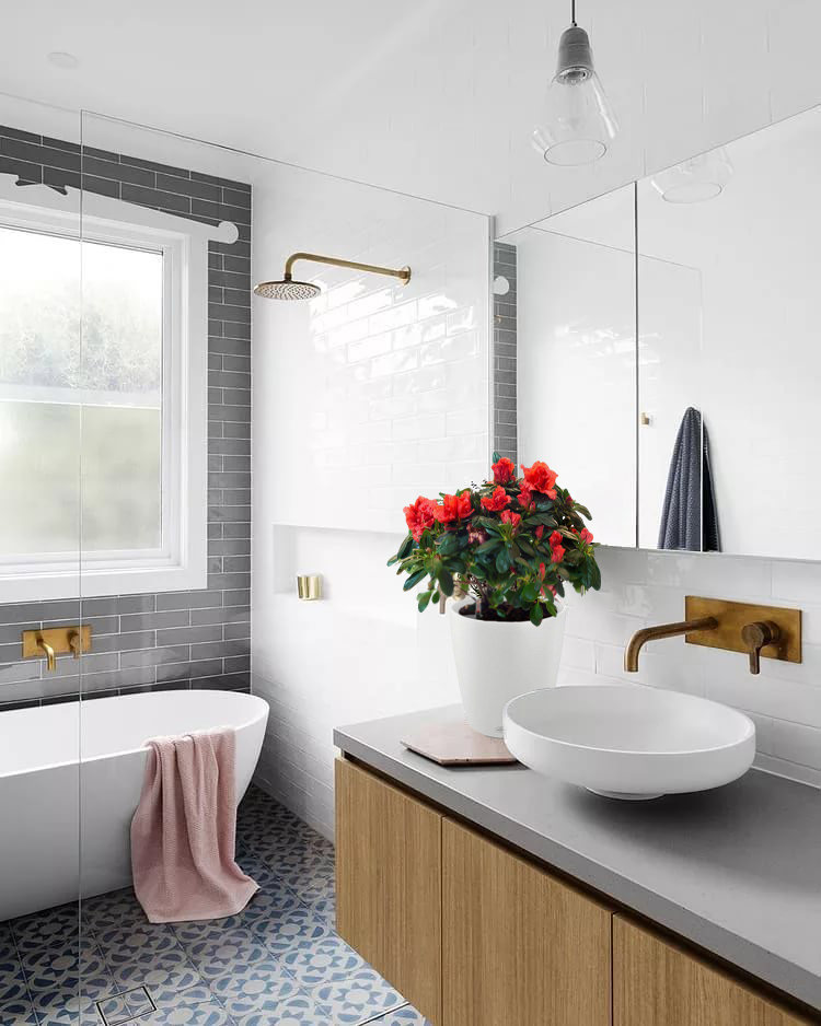 1 - Озеленение ванной комнаты