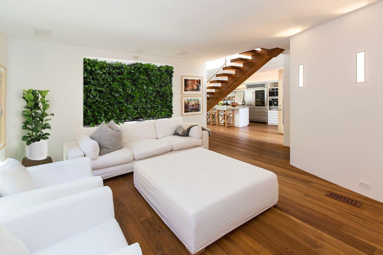 .jpg - Озеленение квартиры