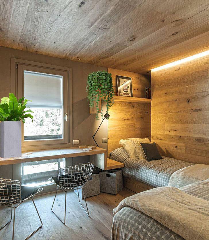 .jpg - Озеленение комнаты